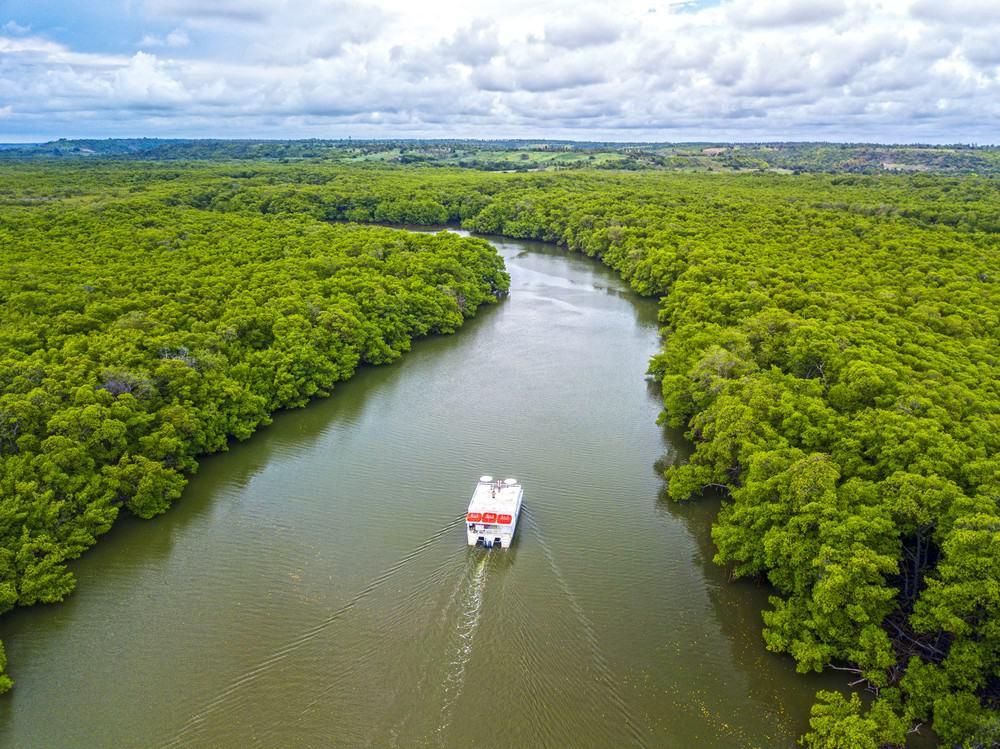 Passeio de Catamarã na Reserva do AbiaÍ