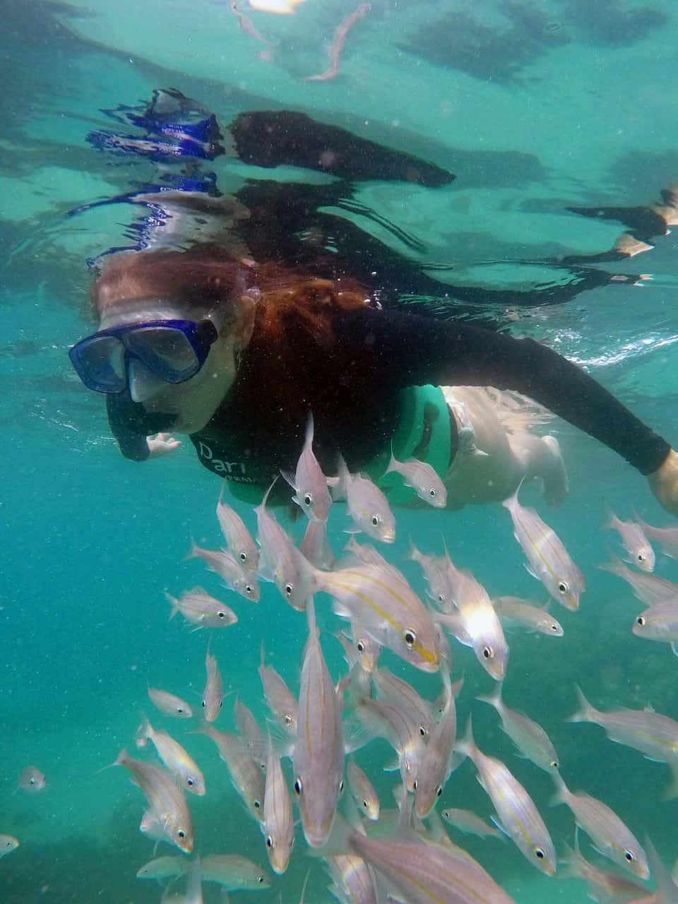 Maracajaú: O Caribe do Nordeste